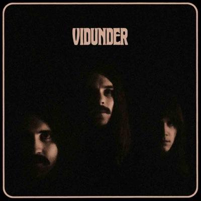 vidunder_vidunder