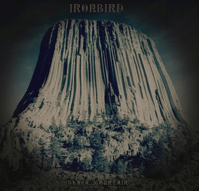 Ironbird